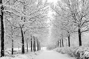 اگر قصد مسافرت در زمستان دارید این نکات را حتماً بخوانید