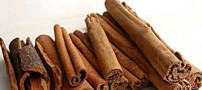 ادویه های زمستانی را بشناسید و مصرف کنید