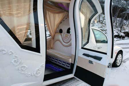عکس هایی از زیباترین ماشین عروس منحصر بفرد جهان