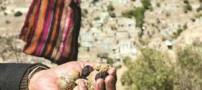 معرفی کامل هنر هوربافی در شهر ایلام