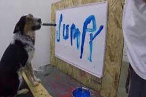 [عکس: smart-dog-who-writes-his-name-brush-photo.jpg]