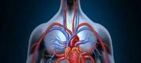 علایم و نشانه های اصلی گردش خون ضعیف در بدن