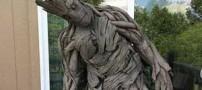هنرمندی که با ریشه درخت لباس جالبی ساخت ( عکس)
