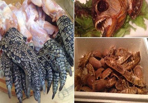 جانوران وحشتناکی که در این رستوران طبخ می شوند (عکس)