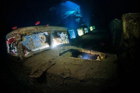 عکس های دیدنی و منتخب دنیای شگفت انگیز زیر آب