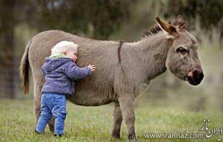 حیوانات خانگی عجیب و غریب افراد سرشناس (عکس)