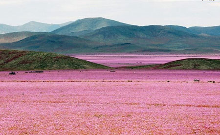 عکسهای نایاب دیده نشده از طبیعت فوق العاده زیبا