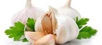 آشنایی با 3 ادویه گیاهی ضد کلسترول خون