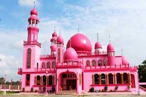 مسجد متفاوتی که همه جای آن صورتی است (عکس)