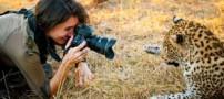 زن نترسی که که از یوزپلنگ عکس سلفی گرفت (عکس)