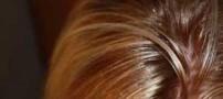 راه هایی برای جلوگیری از چرب شدن موها