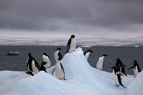 عکسهای دیدنی از ده جاذبه شگفت انگیز طبیعی (توضیحات)