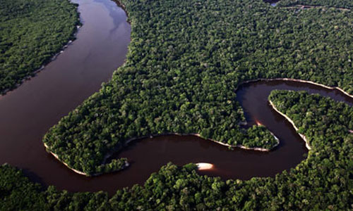 جنگل آمازون یکی از عجایب هفتگانه جدید جهان (عکس)