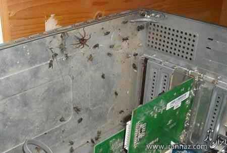 کثیف ترین کامپیوتر جهان را ببینید! (عکس)