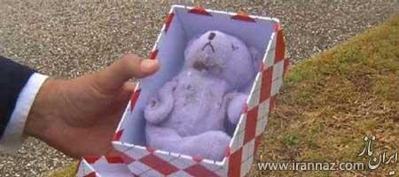 تصاویر تکان دهنده از بلعیده شدن خرس توسط مار