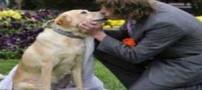 پسر جوانی که با سگ ماده رابطه جنسی برقرار می کند (عکس)