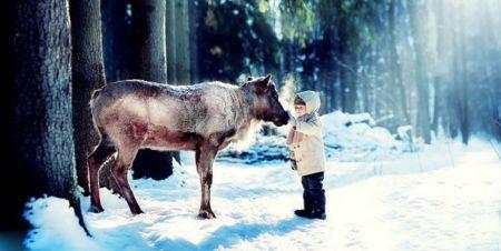 عکسهای عاشقانه از رابطه انسان با حیوانات