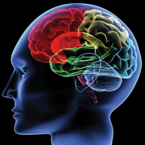 روش غلبه بر سر و صدای ذهن