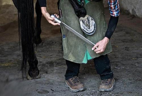 تنها بانوی نعلبند ایرانی را بشناسید (عکس)