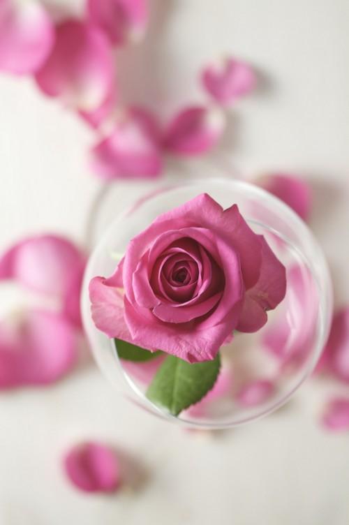 هنگام افطار سه قاشق گلاب میل کنید