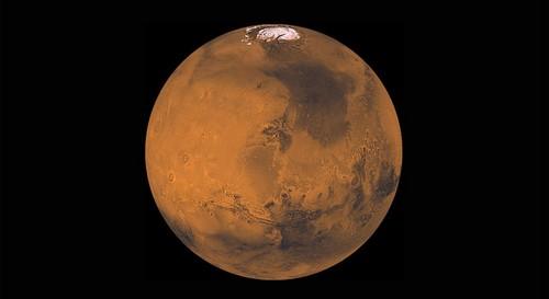 ایلان ماسک می خواهد انسان ها را بروی مریخ فرود بیاورد