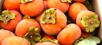 دانستنی هایی درباره ی خواص میوه خرمالو