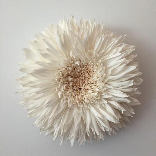 عکس هایی از ساخت گل های باورنکردنی با کاغذ