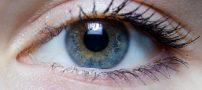 با خوردن این مواد غذایی از چشم تان محافظت کنید