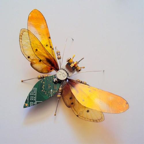 عکس های جالب از حشرات الکتریکی جاسوس