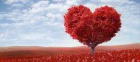 شعر بسیار زیبای عشق در لحظه پدید می آید