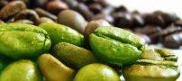 آیا با قهوه سبز کاهش وزن پیدا میکنیم؟