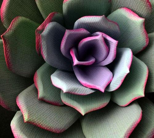 عکس هایی از گل های ساخته شده با کاغذ
