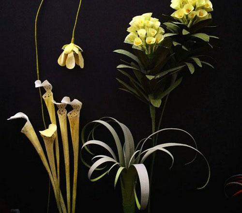عکس هایی از گل های ساخته شده با کاغذ  عکس هایی از گل های ساخته شده با کاغذ 146965217854271 irannaz com