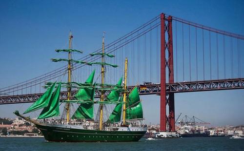 عکس های دیدنی از مسابقه کشتی های بلند بادبانی