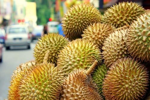 نکاتی درباره ی خواص میوه خارگیل
