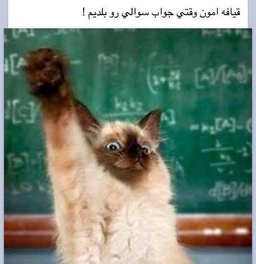 عکس نوشته های خنده دار و طنز آخر هفته  عکس نوشته های خنده دار و طنز آخر هفته 1211853466 irannaz com