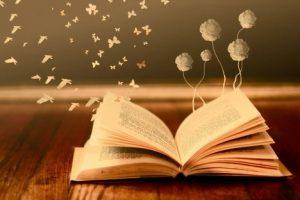 داستان زیبا و پندآموز تدی