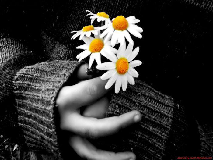 عکسهای زیبا و عاشقانه