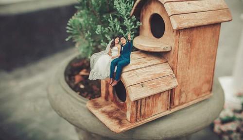 ایده های جالب برای گرفتن عکس عروسی (عکس)