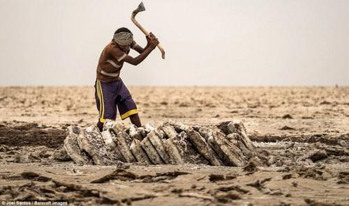 این مرد سخت ترین شغل دنیا را انجام می دهد (عکس)