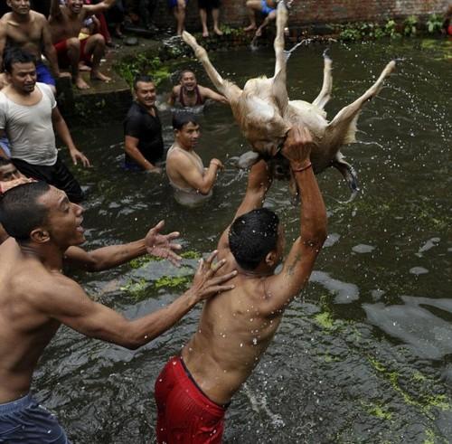 جشنواره باورنکردنی و وحشیانه مردان در نپال (عکس)