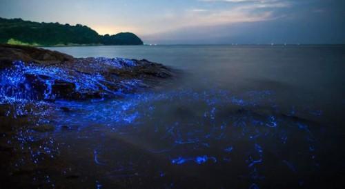 عکس های بسیار زیبا از سنگ های گریان در ساحل