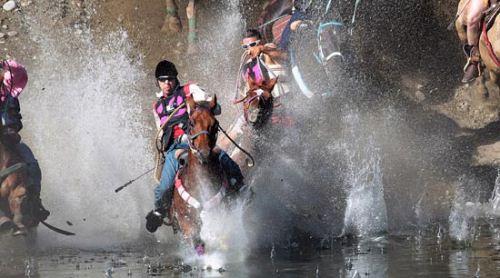 عکس های وحشتناک از مسابقه خودکشی در واشنگتن