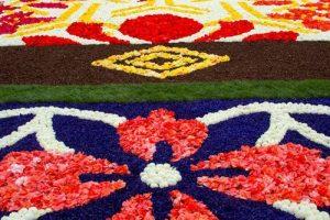 عکس هایی از فرش هایی که از جنس گل و گیاه