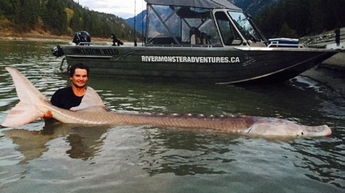 صید کمیاب ترین ماهی دنیا توسط پسر 19 ساله (عکس)