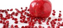 با خوردن انار بافت عضلات خود را ترمیم کنید!!
