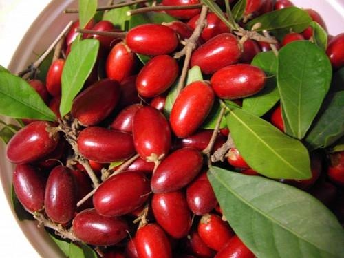 عکس های باورنکردنی از عجیب ترین میوه های دنیا  عکس های باورنکردنی از عجیب ترین میوه های دنیا 147281897678436 irannaz com