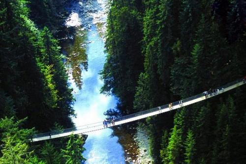 هیجان عبور از یک رودخانه در این عکسها مشاهده کنید