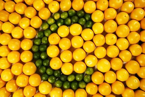 آشنایی با ویتامین c در مواد غذایی