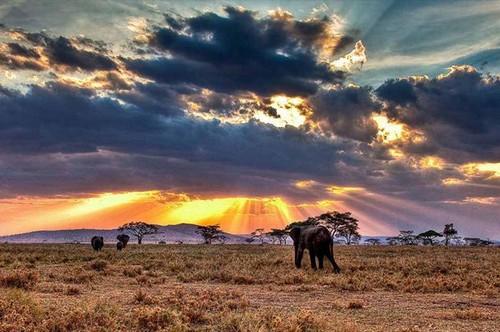 عکس های باورنکردنی از زیباترین پارک ملی دنیا